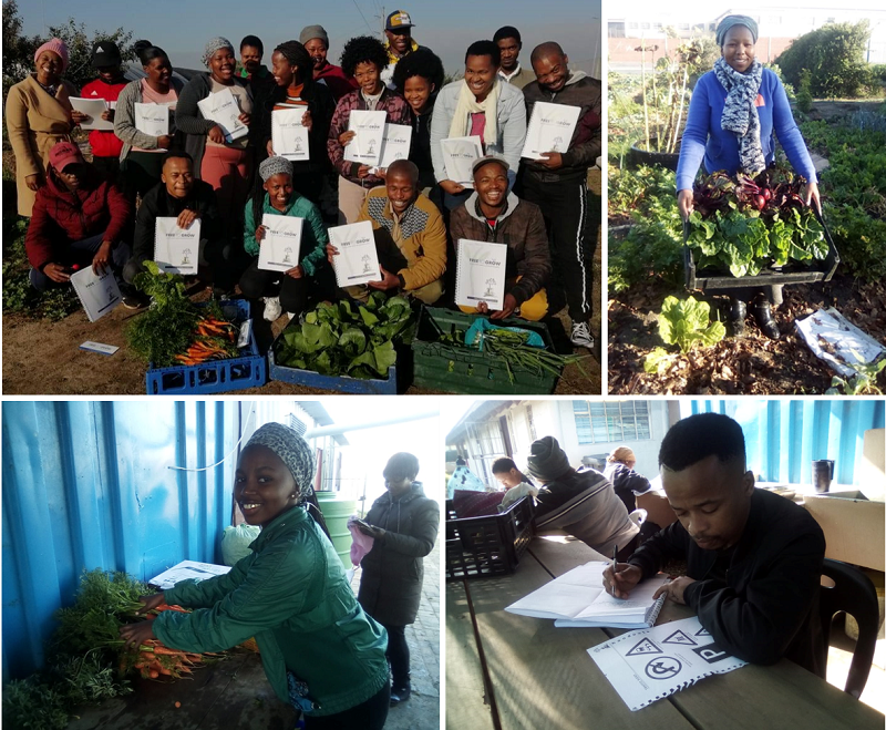 The Free To Grow Foundation sponsored skills development training for youth that are presently working at the Siyazama Community gardens in Khayelitsha.