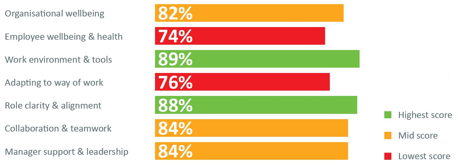 Survey results on organisational wellbeing in South Africa