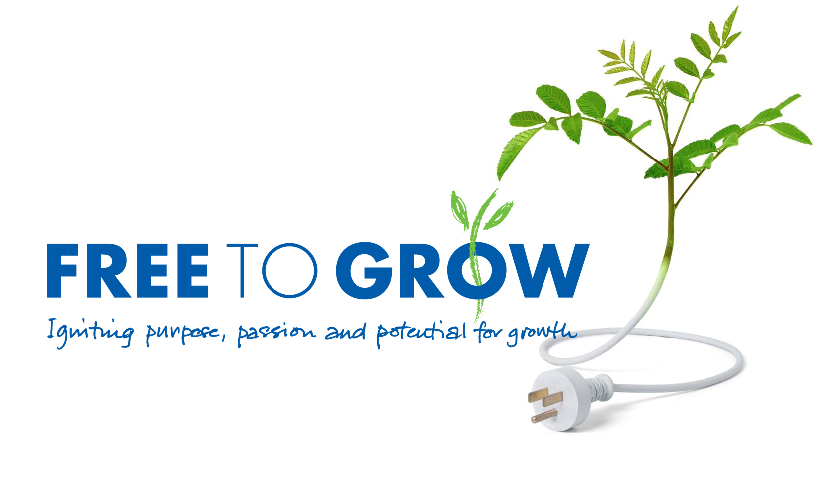 Free To Grow - Igniting Purpose Passion and Potential for Growth