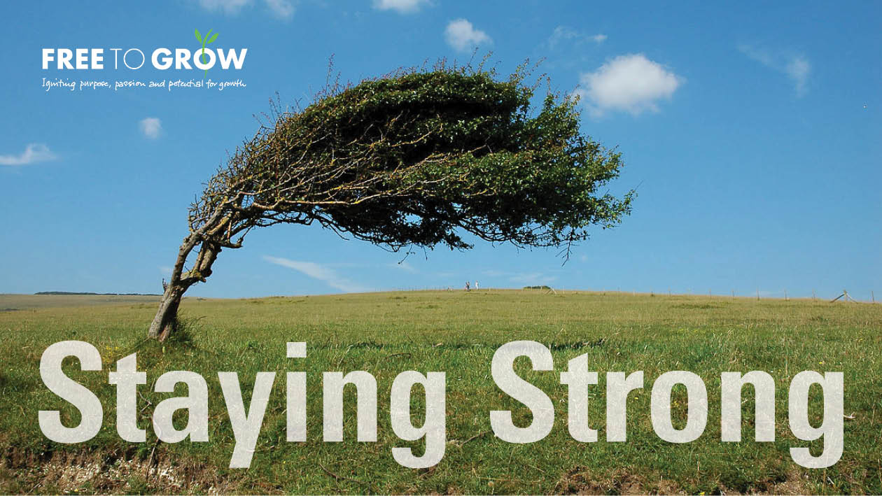 Staying Strong workbook xample