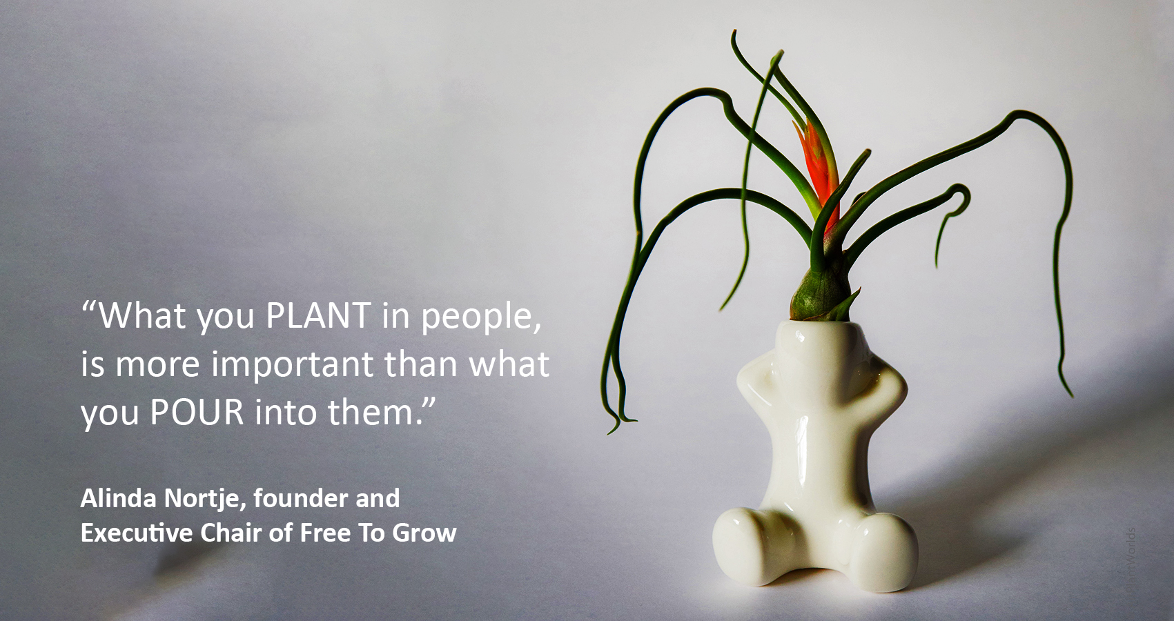 Alinda Nortje, Free To Grow's learning methdology