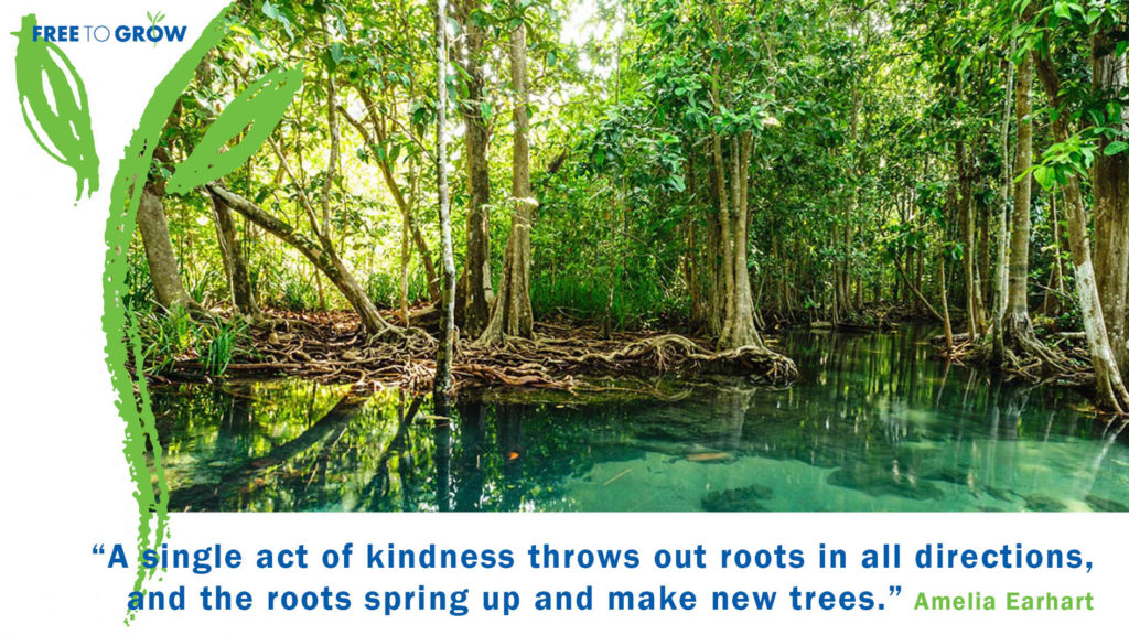 Free To Grow Quote Card - A single act of kindness throws out roots in all directions and the roots spring up and make new trees.